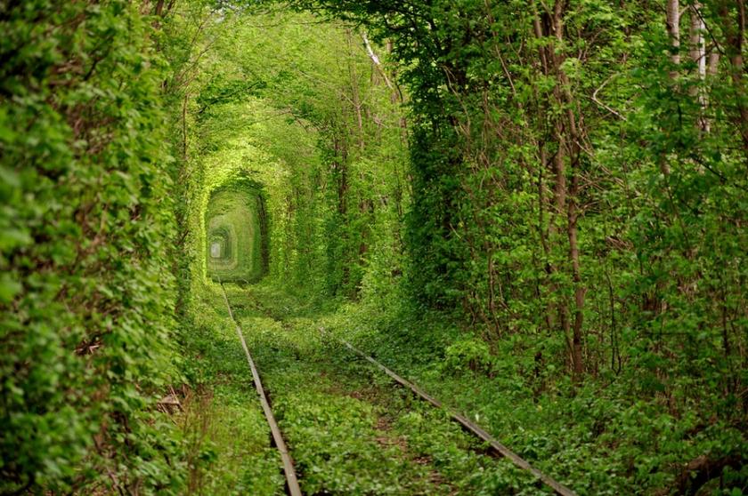 Oleg Gordienko Ukraine Green Tunnel